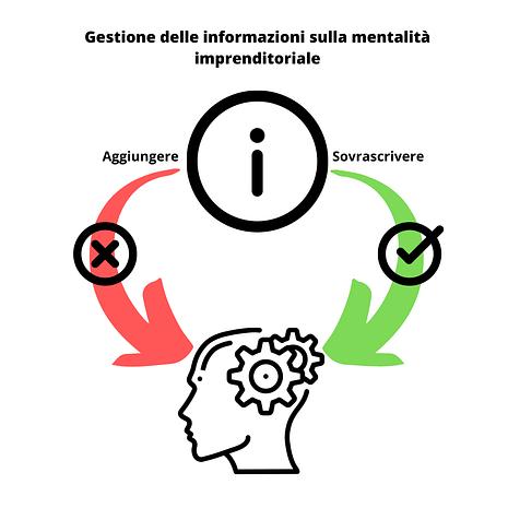 Gestione delle informazioni sulla mentalità imprenditoriale